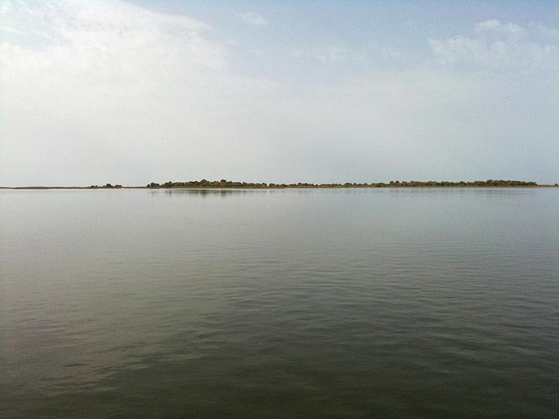 viatges-delta-ebre-punta-banya