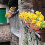 Detall d'una casa a Sant Privat d'en Bas - Garrotxa
